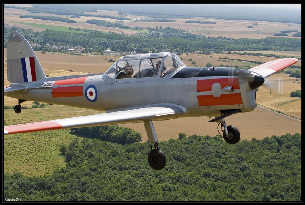 Fly'in Foug'air 2009 Chipmunk-8235